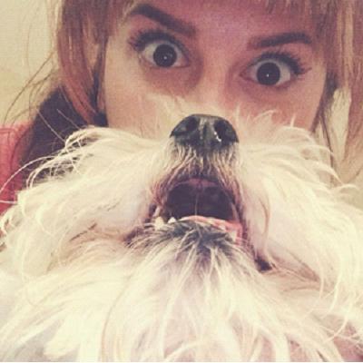 dog-beard4
