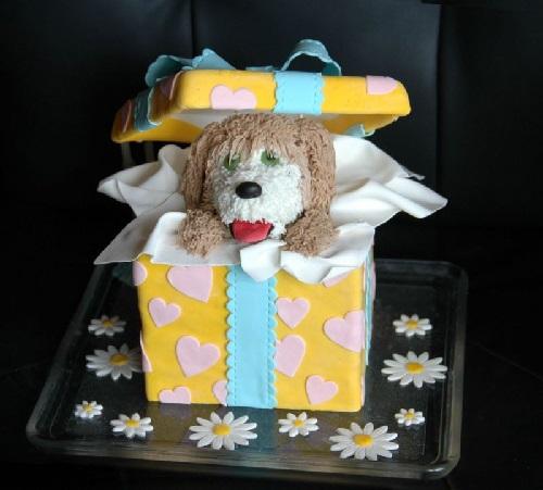 dogcake13